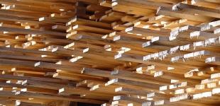 Wszystkie płyty drewniane 50% Taniej!