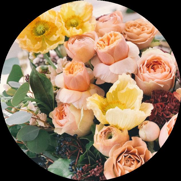 anniversary-beautiful-bloom-931179